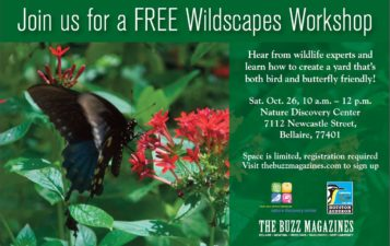 Wildscapes Workshop by The Buzz Magazines
