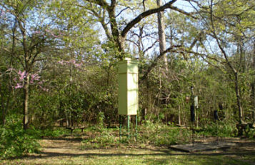 http://www.birdfriendlyhouston.org/wp-content/uploads/2017/01/ELMStower-357x231.jpg